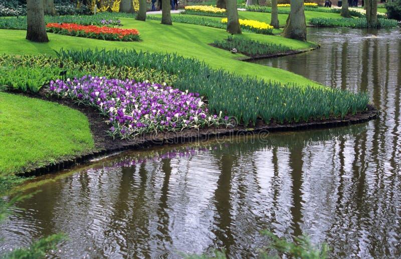 Jardins de Keukenhof imagens de stock