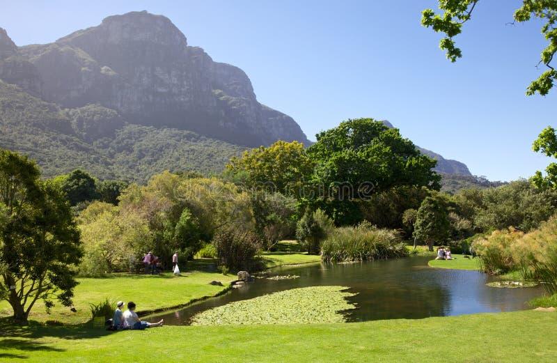 Jardins de Kirstenbosch images stock