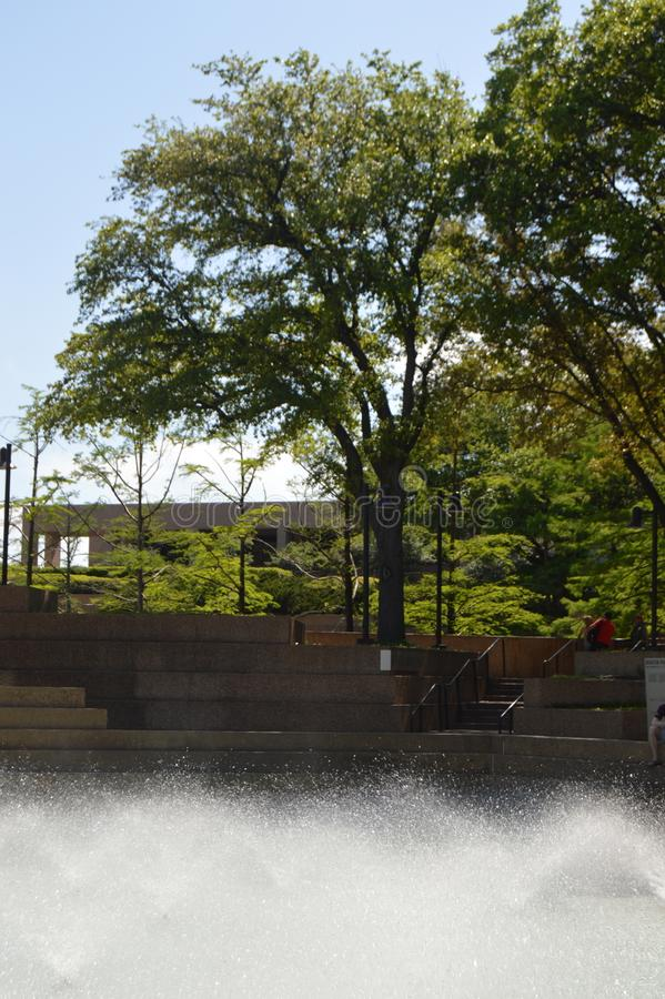 Jardins 1 de l'eau de Fort Worth image stock