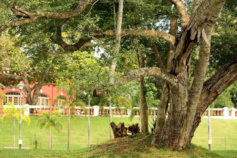 Jardins de palais de Kanaka Kunnu au Kerala, Inde photo stock