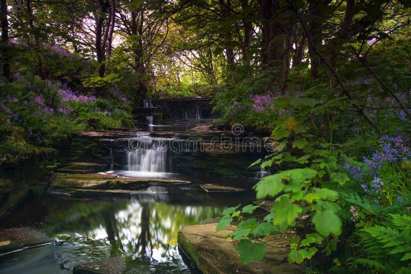Jardins de Woodwick image libre de droits
