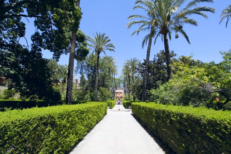 Jardins do Alcazar, Sevilha imagem de stock