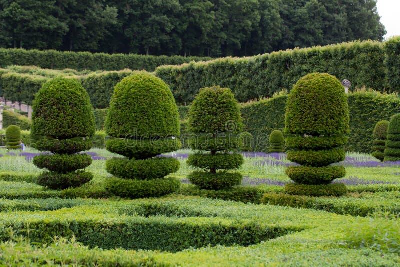 Jardins esplêndidos, decorativos fotos de stock