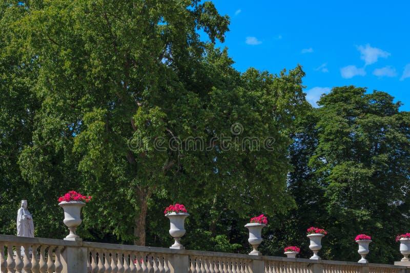 Jardins famoso Lussemburgo, Parigi fotografia stock libera da diritti