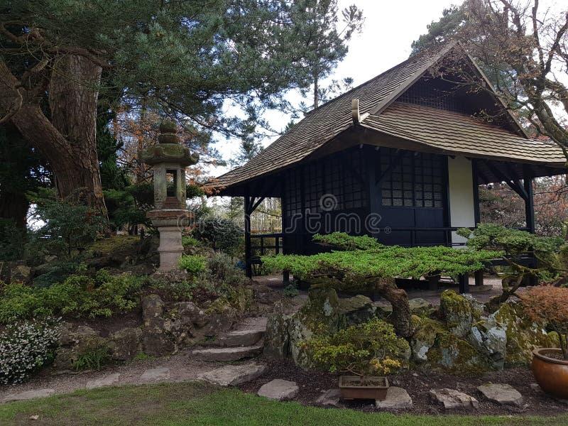 Jardins japonais photo libre de droits