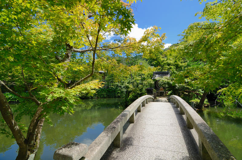 Jardins japoneses imagens de stock