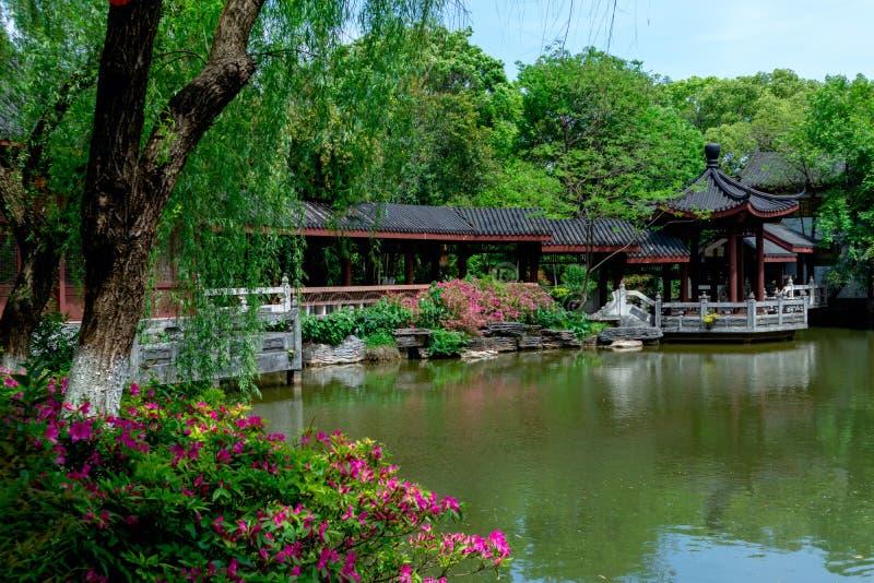 Jardins Jardim-clássicos da mola de Suzhou imagem de stock
