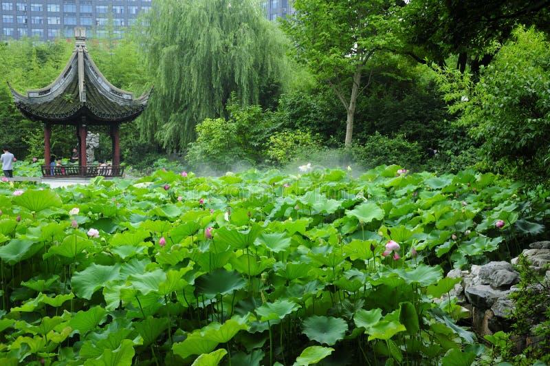 Jardins Lotus Pond de Guyi photo stock