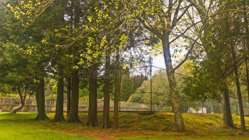 Jardins merveilleux de Madère images libres de droits