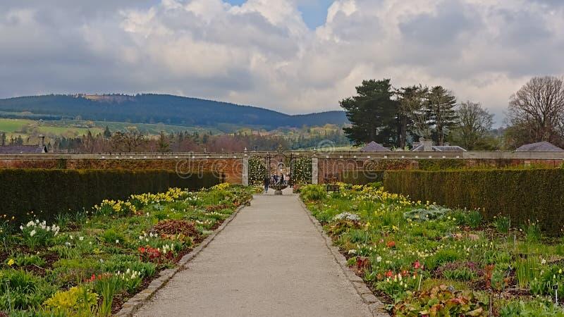 Jardins murados com muitos tipos das flores, propriedade de Powerscourt, Irlanda imagem de stock royalty free