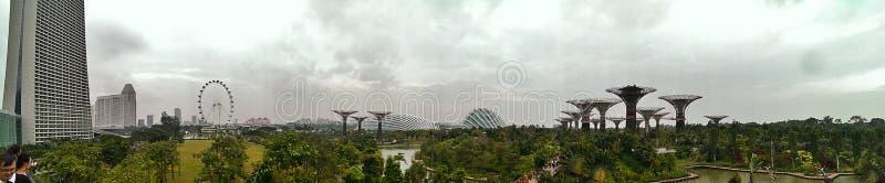 Jardins par la baie à Singapour photographie stock
