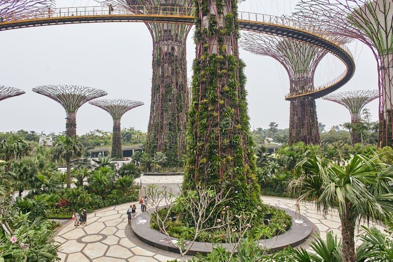 Jardins par la baie, Singapour - 28 mars 2013 : Vue supérieure des jardins par la baie, les gens marchant sur le pont des arbres  photo stock