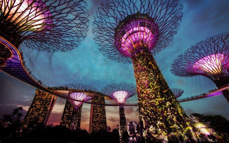 Jardins par le compartiment Singapour images libres de droits