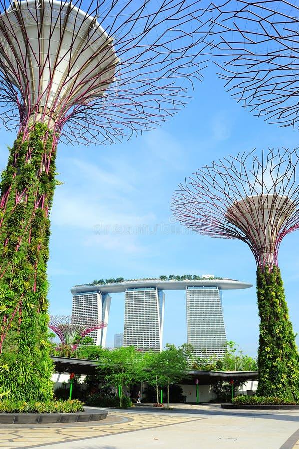 Jardins pela baía em Singapura imagem de stock