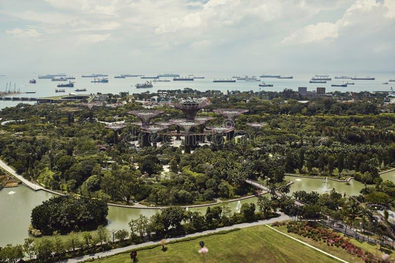 Jardins pela ba?a de cima em Singapura imagem de stock