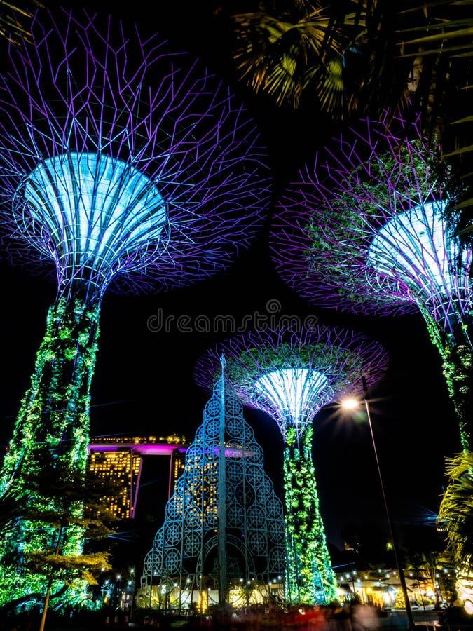 Jardins pela ba?a, Singapura - 26 de novembro de 2018: Opini?o da noite do bosque de Supertree em jardins pela ba?a em Singapura  fotografia de stock