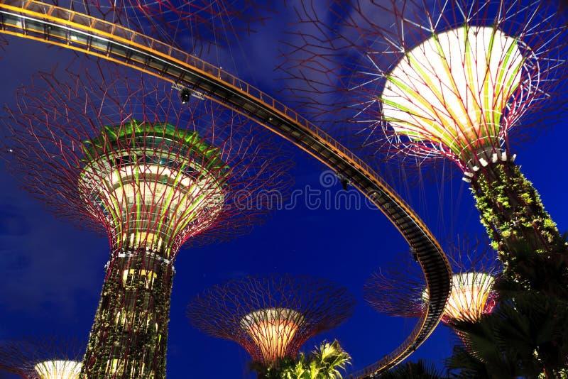 Jardins pelo louro Singapore imagem de stock royalty free