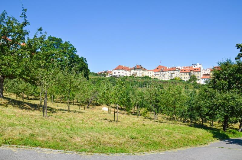 Jardins verdes bonitos no monte de Petrin em Praga, República Checa Construções históricas no fundo Tomado no dia ensolarado, céu foto de stock royalty free