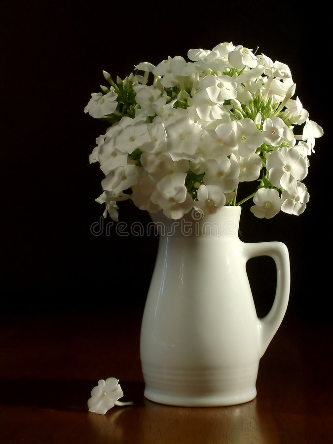 Jarra Y Flores Blancas Imagen de archivo libre de regalías
