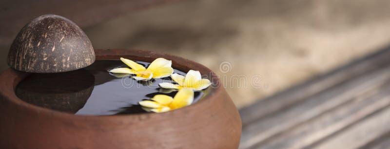Jarro de la arcilla con plumeria de la flor o frangipani adornado en el agua Ruede en el estilo del zen para el humor de la medit fotos de archivo