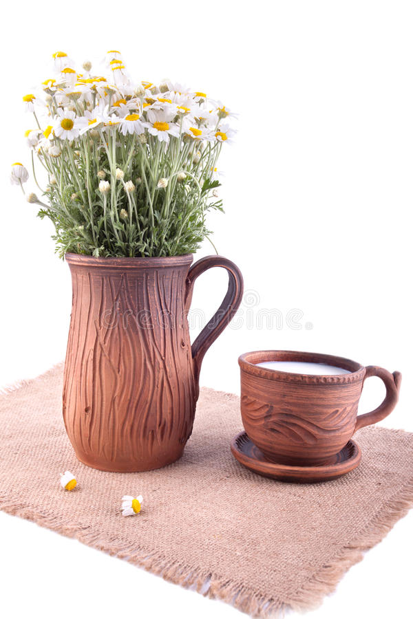 Jarro y taza de cerámica con leche fotografía de archivo