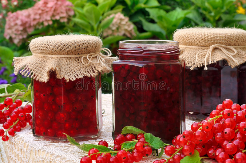 Jars of homemade red currant jam with fresh fruits. Still life royalty free stock image