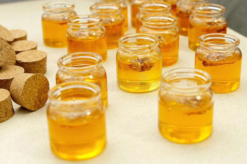 Jars with honey. And walnuts homemade sweet delicious stock image