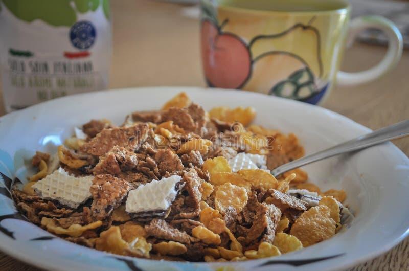 Jarski śniadanie z kukurydzanymi płatkami, cali zboża, ryżu mleko, obrazy royalty free