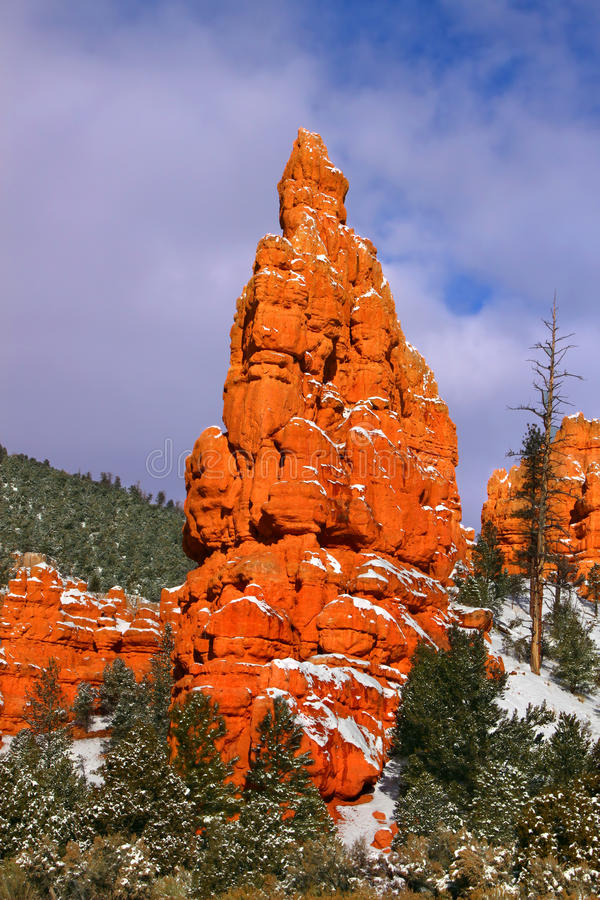 jaru dixie lasowa krajowa czerwień zdjęcia royalty free