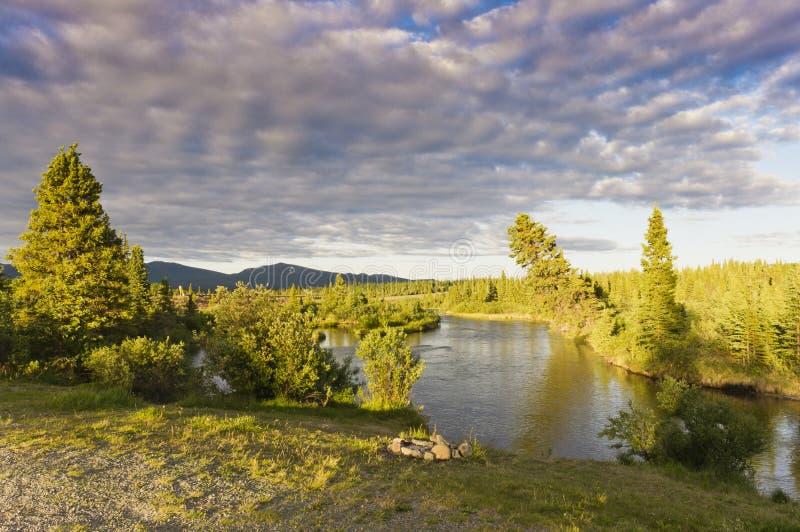 Jarvis River no Yukon, Canadá fotos de stock royalty free