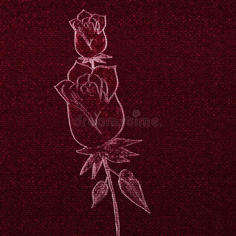 Jarzący się zabarwiającej róży klajstrującej na tle Ręka rysujący projekt ilustracja wektor