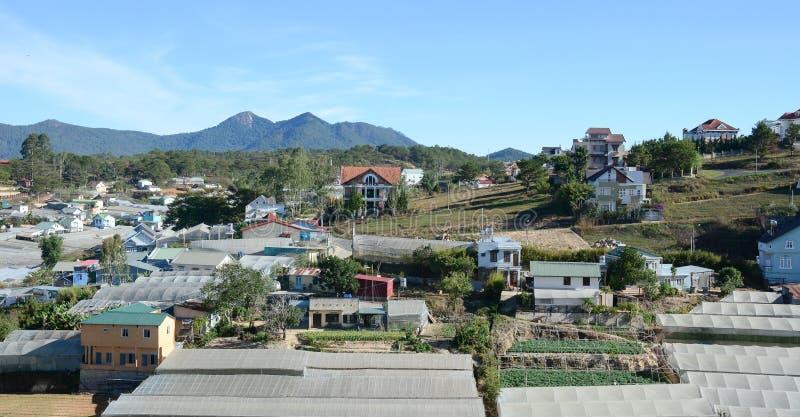 Jarzynowe plantacje w Bao Loc, Wietnam zdjęcia royalty free