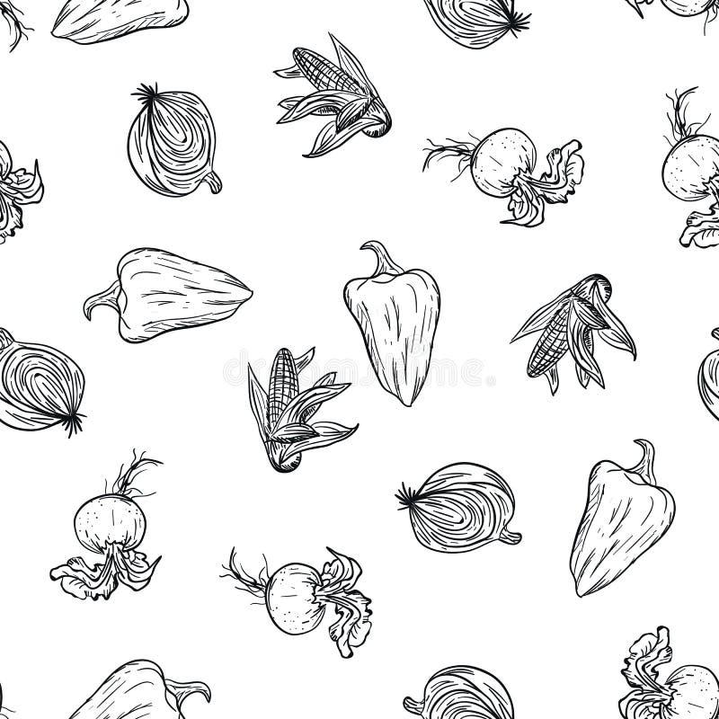 Jarzynowy doodle wzoru ręki rysunek na białym tle Doodle warzywa rysunkowy wzór Dojrzała jesieni uprawa i zdjęcie stock