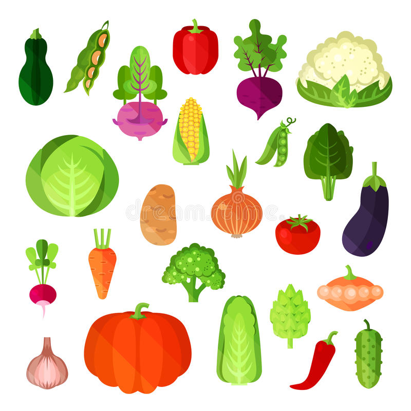 Jarzynowy lata żniwo, weganinu jedzenia kolekcja Grula, napy kapusta i capsicum czerwony pieprz, annuum lub dzwonkowy i ilustracji
