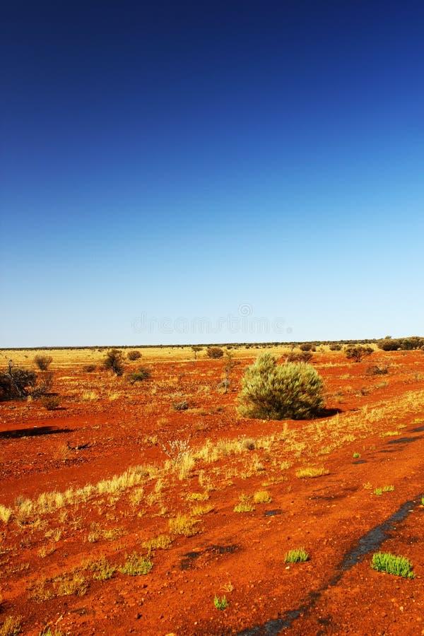 Jaskrawa Czerwona Australijska pustynia, zachodnia australia zdjęcia royalty free