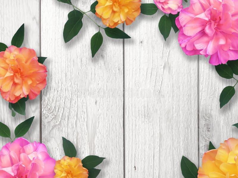 Jaskrawa kwiat granica zdjęcia stock