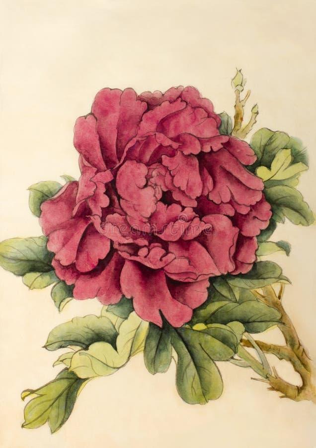 Jaskrawa kwiat peonia royalty ilustracja