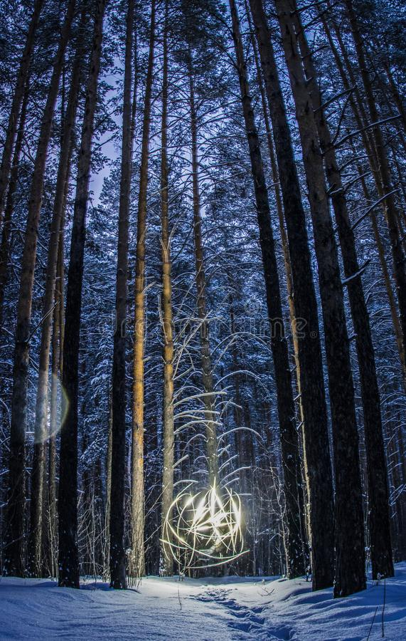 Jaskrawa piłka iluminuje polanę w drewnach światło zdjęcie stock
