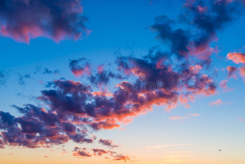 Jaskrawa pomarańcze chmurnieje w wieczór niebie fotografia stock