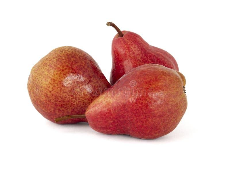 Jaskrawa różowa bonkrety owoc na białym tle obraz stock