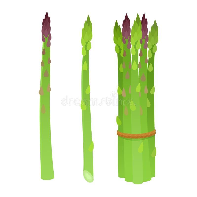 Jaskrawa wektorowa kolekcja kolorowy kreskówka asparagus odizolowywający na bielu ilustracja wektor