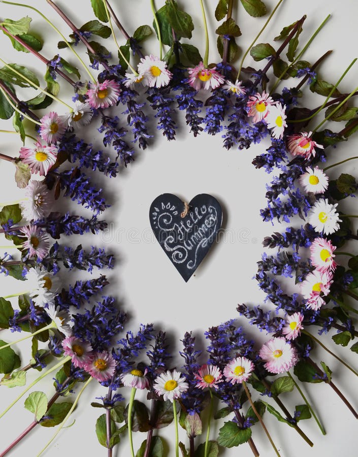 Jaskrawa wiosna kwitnie na białym tle zdjęcia royalty free