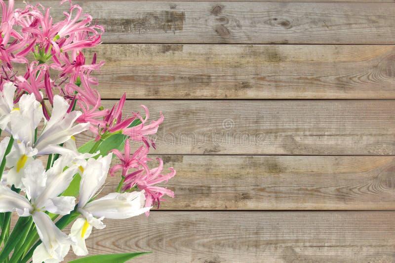 Jaskrawa wiosna kwitnie na drewnianym stole obrazy royalty free