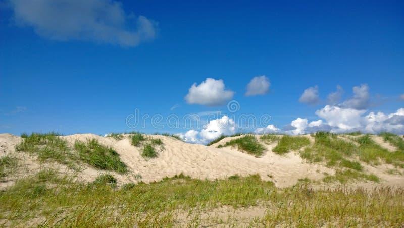 Jaskrawe Pogodne piasek diuny z trawą w słonecznym dniu zdjęcie royalty free
