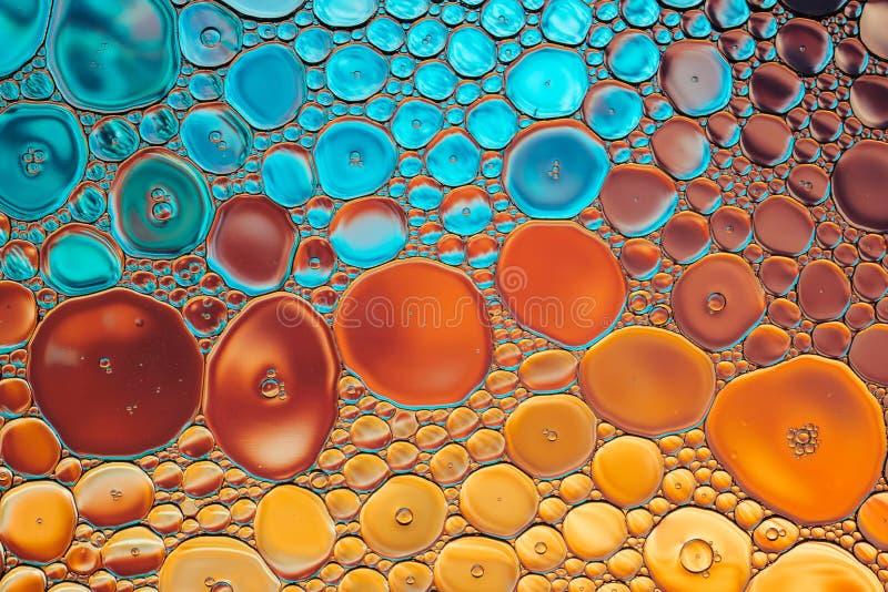 Jaskrawego woda oleju bąbla makro- abstrakcjonistyczny tło obraz stock