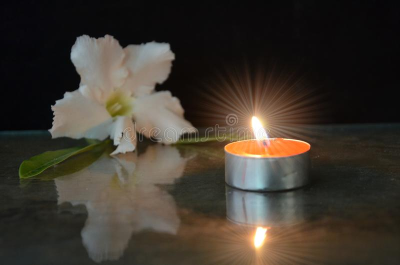 Jaskrawej świeczki lekki i biały kwiat na szkle obrazy royalty free
