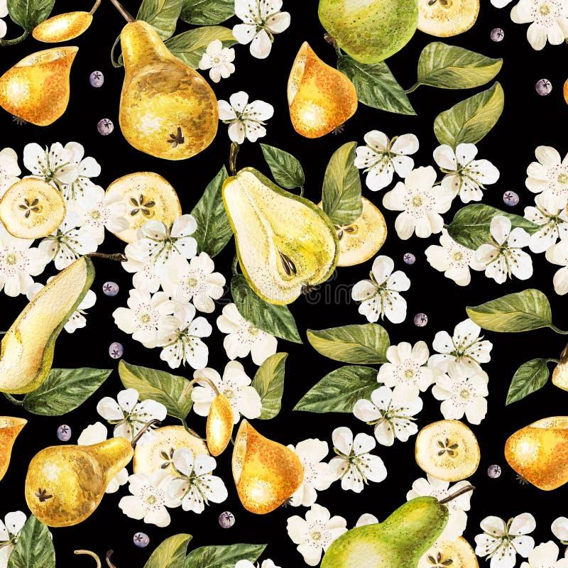 Jaskrawej akwareli bezszwowy wzór z kwiatami, owoc groch ilustracja wektor