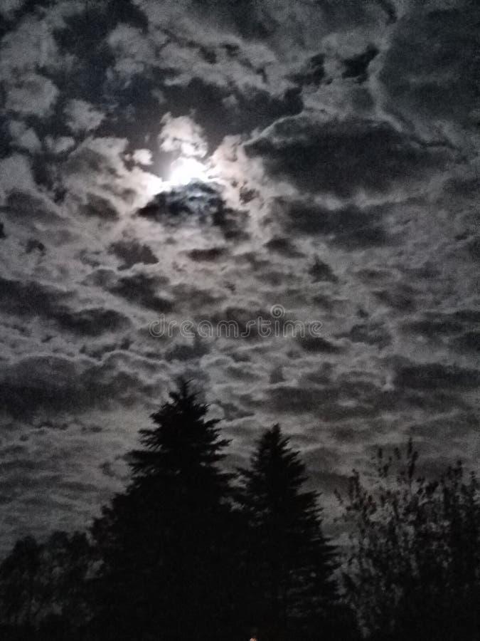 Jaskrawej księżyc Chmurny niebo obraz royalty free