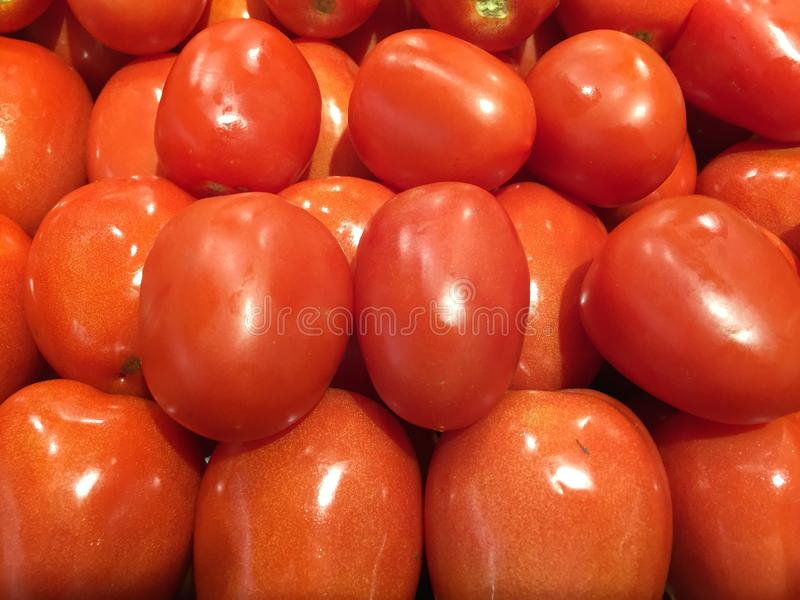 Jaskrawi Czerwoni Roma pomidory zdjęcie stock