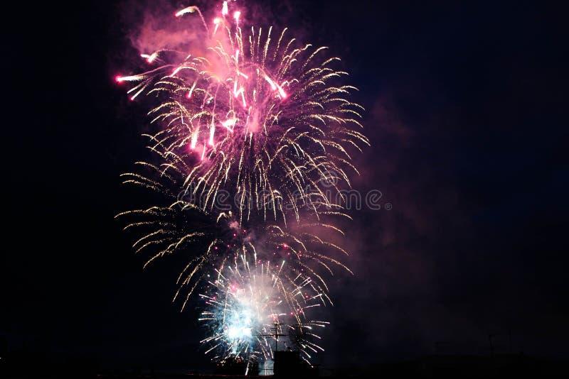 Jaskrawi fajerwerki w nocnym niebie obrazy royalty free